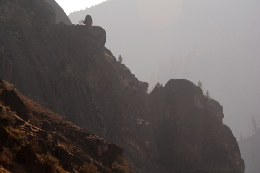 Smokey haze in the Salmon River canyon