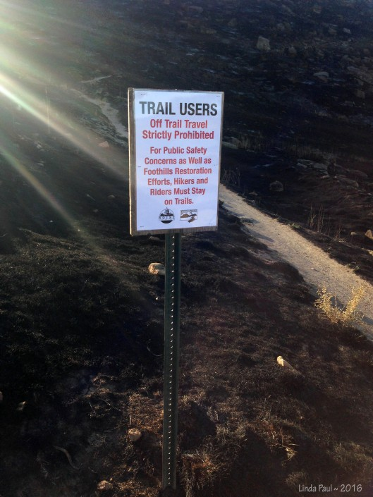 Hikers & bikers are asked not to stray off the path.