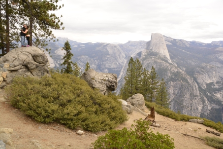 Half Dome viewed from across the valley.